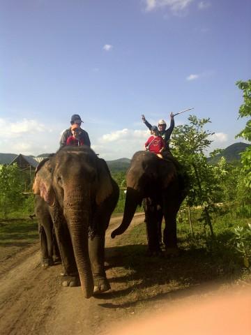 Doc Cheys in Thailand on elephants