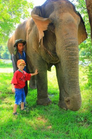 Thailand My friend the elephant